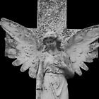 Gothic cemetery angel on black by Heather Hood