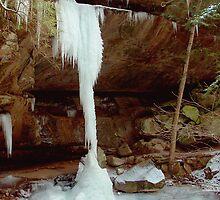 Frozen in Mid Fall by Paul S.  Atkinson
