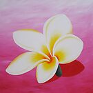 Frangipani with shadow (pink) by Jane Whittred