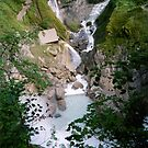 Reichbach Falls - view from above by georgiegirl