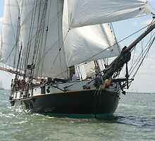 Full sail by John Lines