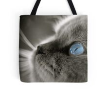 Blue Gaze Tote Bag