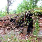 The Old Log Cabin by WildestArt