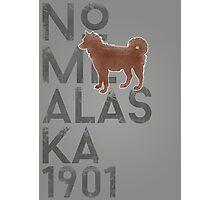 Nome Alaska 1901 Photographic Print