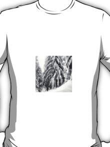 backcountry splitboarding T-Shirt