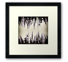Agave Curtain Framed Print