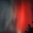 Aurora Australis by Peter Daalder