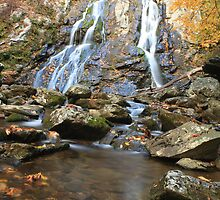 Autumn Waterfall by Susan Gottberg