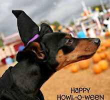 Happy Howl-O-Ween by Barbara Gordon