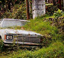 Car crash by Michael Naylor