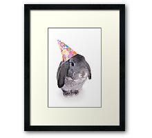 Birthday Rabbit Framed Print
