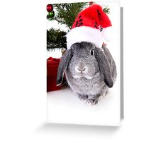 Christmas Rabbit Greeting Card