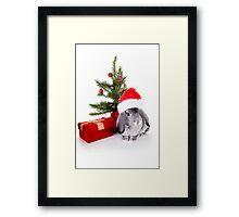 Christmas Rabbit Framed Print