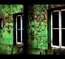 Fenster by Robert Ibelings