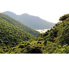 Discovering Eden III - Hong Kong, China.  Photographic Print