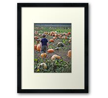 getting lost in a world of pumpkins Framed Print