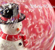 Merry Christmas Snowglobe by Scott Liddell