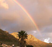 Rainbow Nation by Wazi