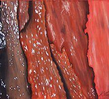 Karalee Bark by Kathie Nichols