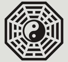 Pakua, Bagua, Yin Yang, China, symbol of reality by nitty-gritty
