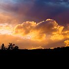 A Sunset Orange by Ollieography
