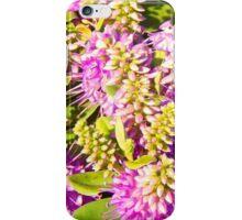 Wild Flowers of the Coast iPhone Case/Skin