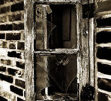 The Window by Robert Ibelings