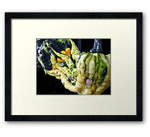Gords of many colors Framed Print