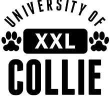 University Of Collie by kwg2200