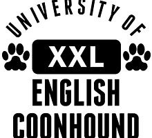 University Of English Coonhound by kwg2200