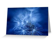 Tiny Fireworks Greeting Card