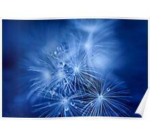 Tiny Fireworks Poster