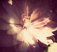 longing by sabrina card