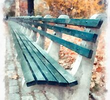 Central Park benches in New York City by Edward Fielding