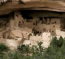 Cliff Palace  by CRobinson