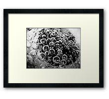 Bubbles 2 Framed Print