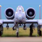 A10 Warthog by Bob Martin