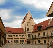 Sibiu - Hermannstadt. European Capital of Culture in 2007 by GabiB