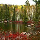 minnow lake by panthrcat