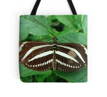 Zebra Longwing Butterfly - Open Wings Tote Bag