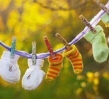 Autumn nostalgia by lullaby