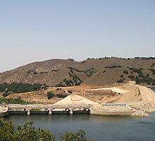 Bradbury Dam by Henrik Lehnerer