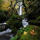 Elowah Falls Columbia River Gorge Oregon 1 by Bob Christopher