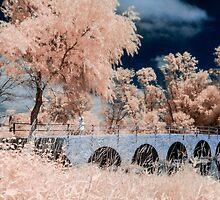 IR Bridge w. model by KSPhotographyx