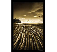 Flowing Textures Photographic Print