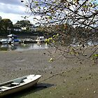 Sunny Autumn Day in Chiswick by Joanna Jeffrees