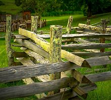 FENCE 1B 3466 by RightEye