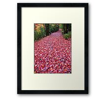 The Real Red Carpet Framed Print