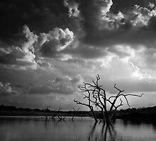 Canyon Lake by Andy Heatwole