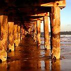 Under The Pier. by trevorb